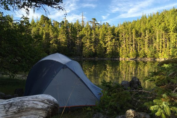 Great Bear Rainforest camping