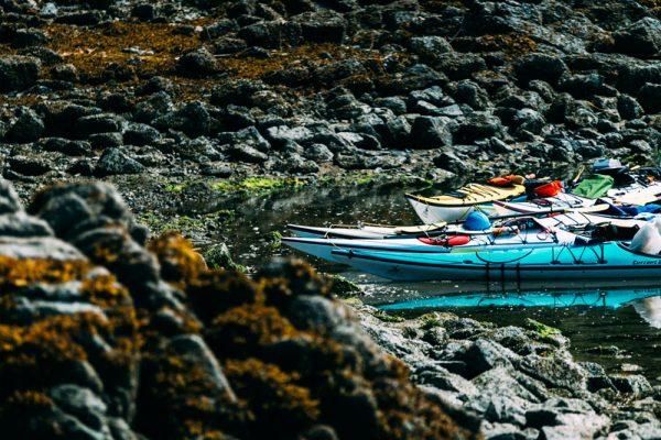 Great Bear Rainforest sea kayaking