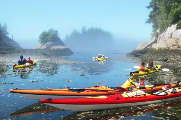 mothership kayaking broughton archipelago